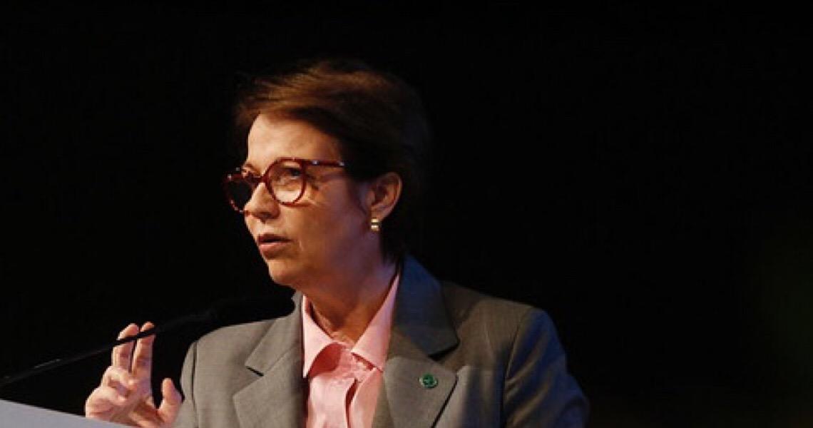 'Remédio precisa chegar no doente antes da morte', diz Tereza Cristina