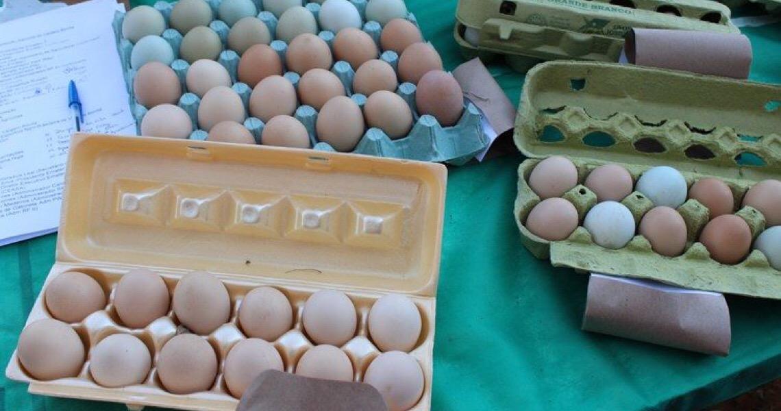 Produção de ovos caipiras cresce em todo o DF