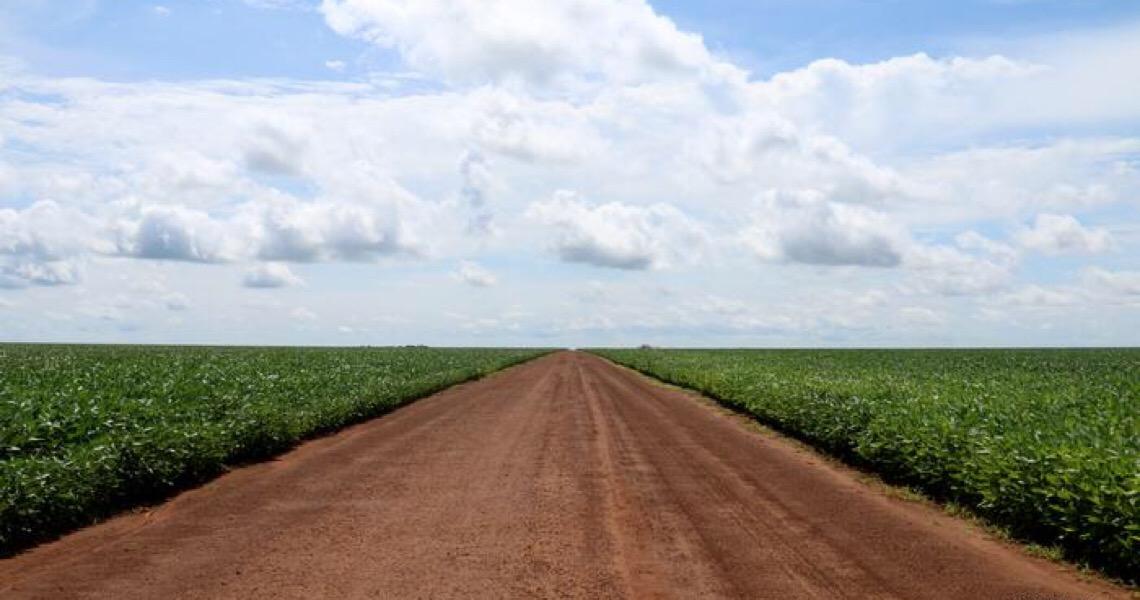 A produção de soja na Amazônia