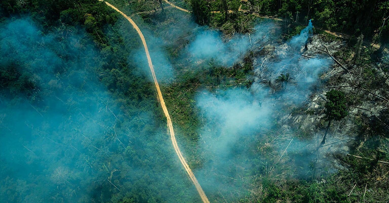 Ituna-Itatá: Uma terra indígena da Amazônia tomada por ganância e destruição