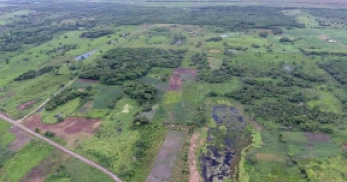 Arqueólogos descobrem a estrutura mais antiga feita pelos maias