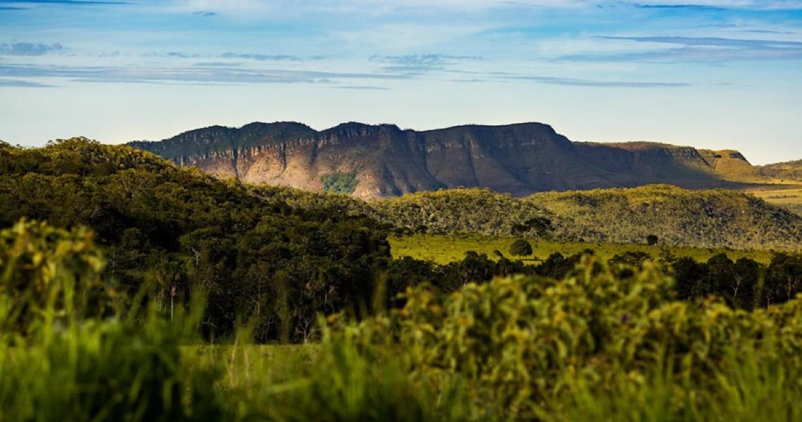Chapada dos Veadeiros: Governo de Goiás prepara parque em área alvo de desmatamento