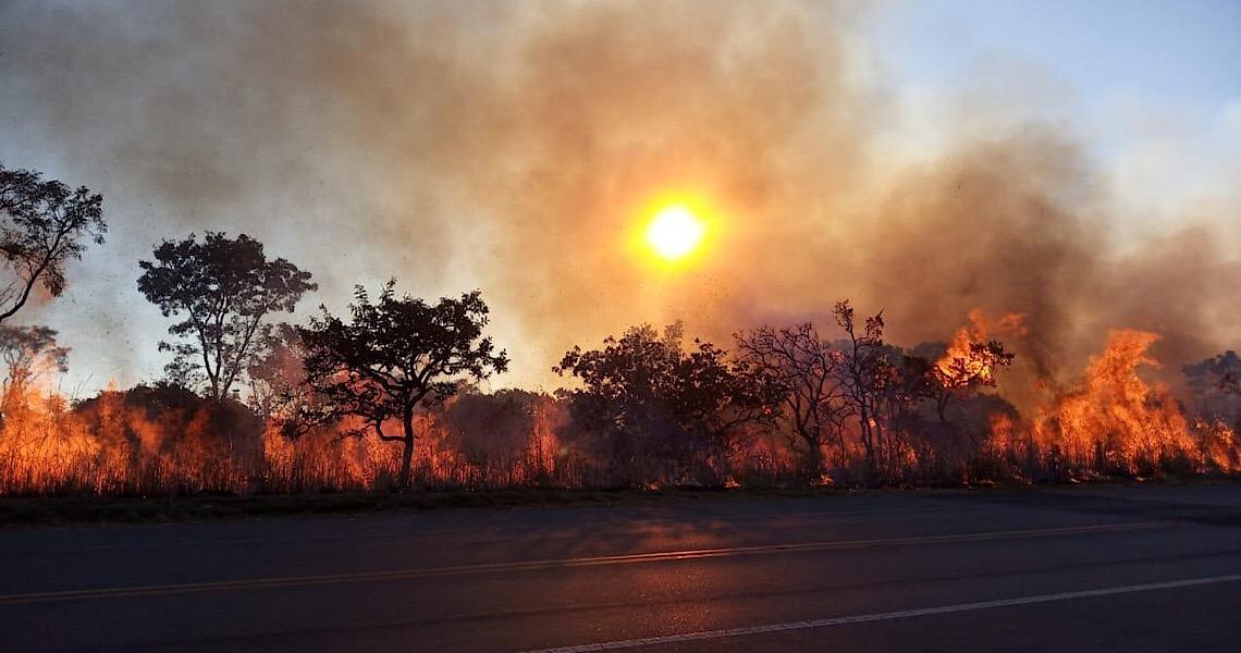 Começam as queimadas controladas para prevenir incêndios