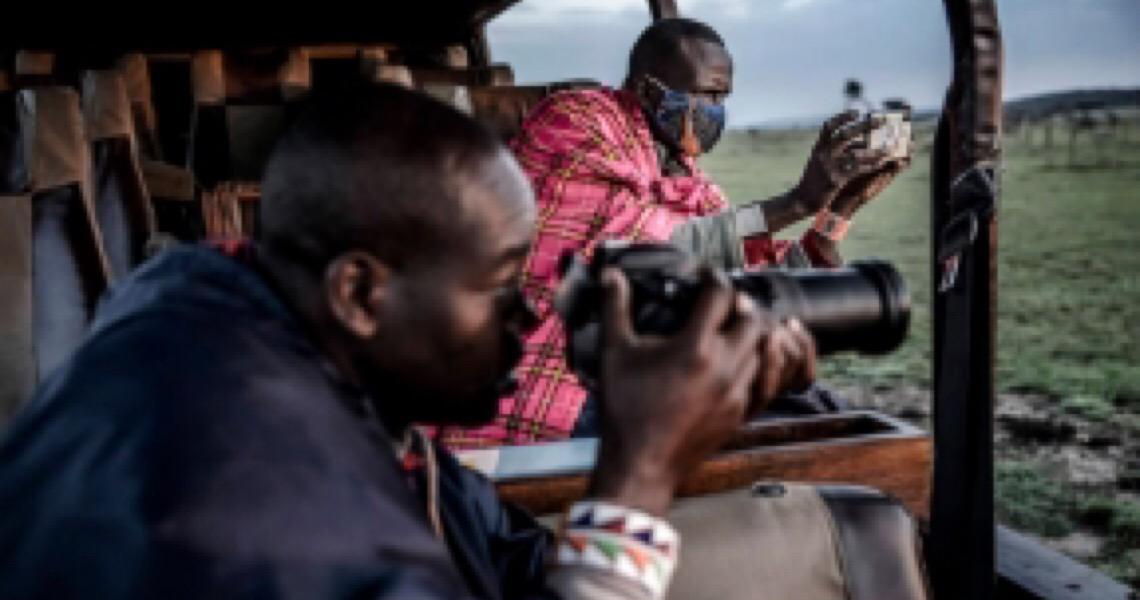 Crise põe em risco animais na África