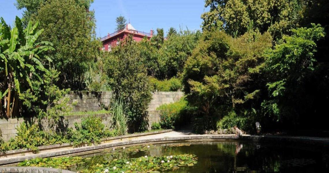 Jardim Botânico do Porto abriu portas para visitas norturnas até setembro