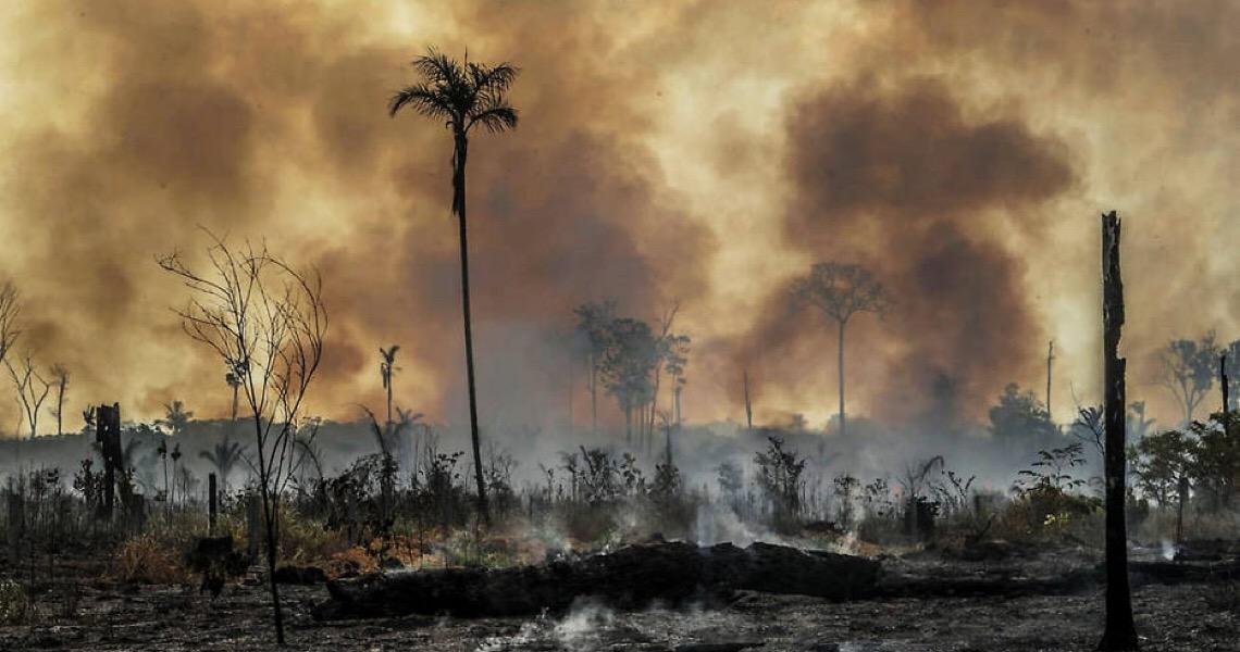 Na contramão climática, Brasil vê fundos trilionários barrarem empresas nacionais