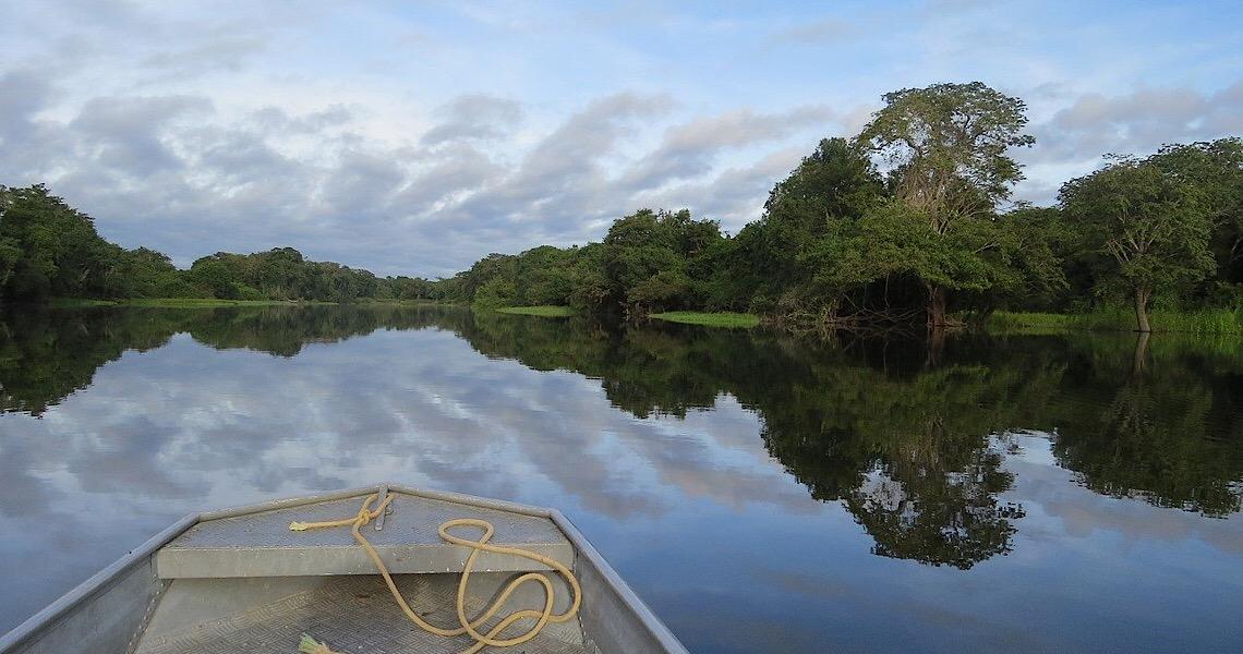 Brasil é o terceiro país que mais mata ambientalistas