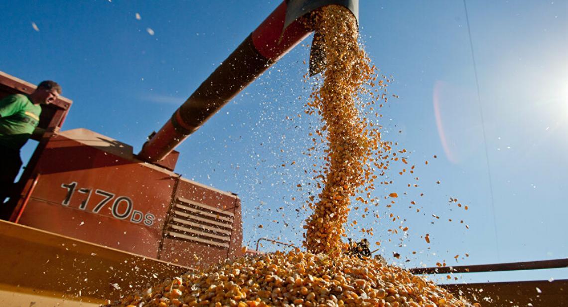 Economia brasileira sofre impacto negativo de não diversificar exportação, diz economista