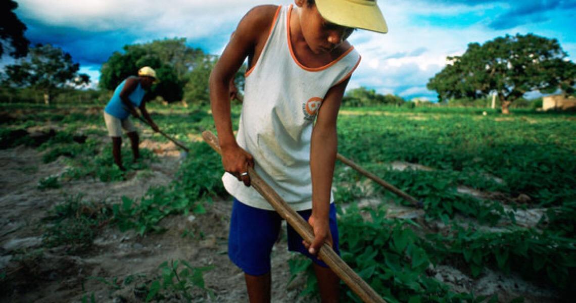 Brasil pode liderar criação latino-americana de novos empregos na economia verde