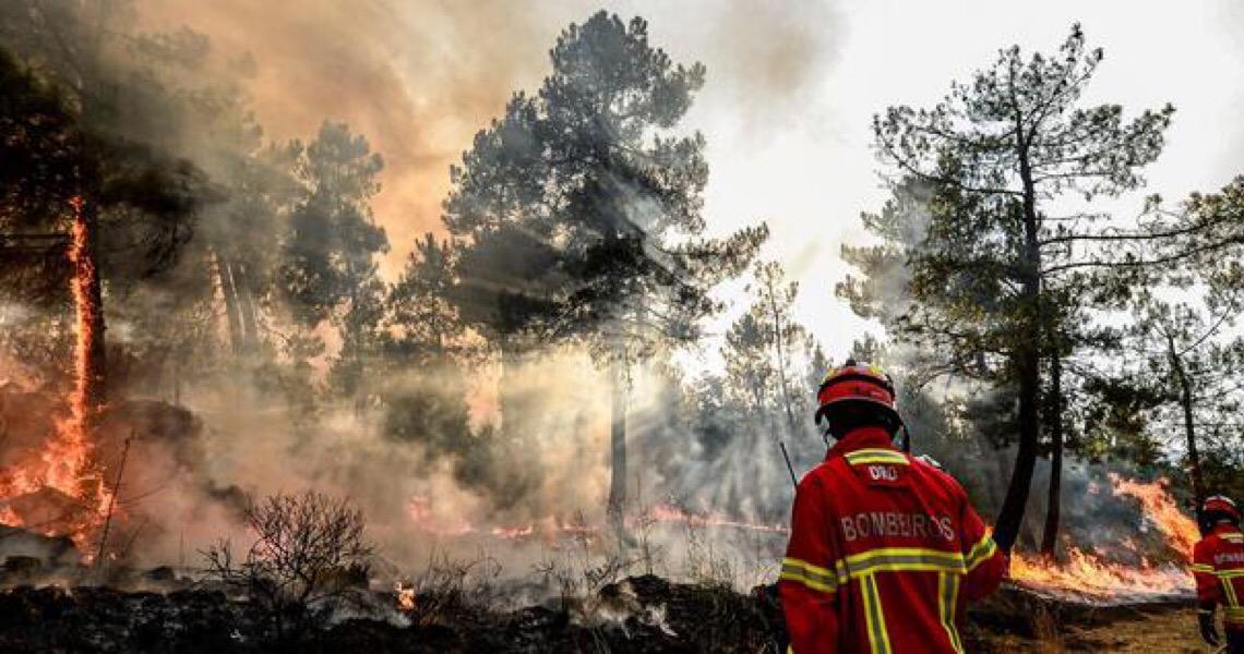 Em 90 anos, Portugal com o ano mais quente