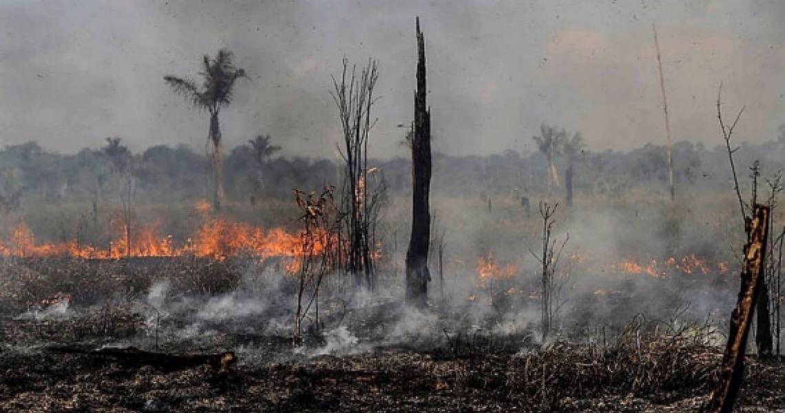 Governo repassa a militares 84% de recursos recuperados da Lava Jato para a Amazônia