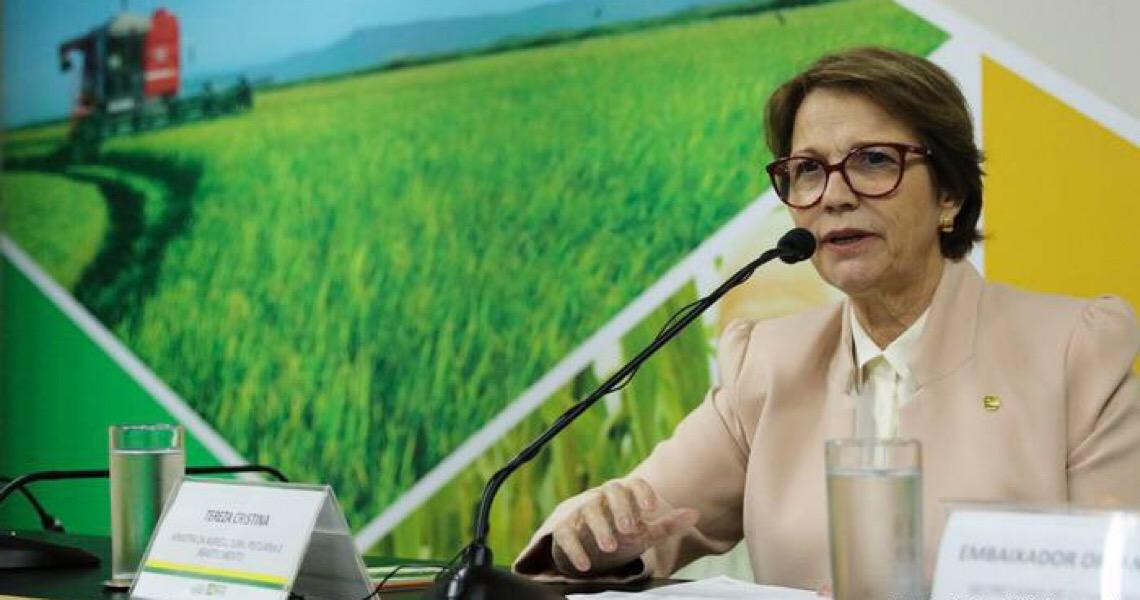 Tereza Cristina: Agronegócio não deixou PIB cair durante pandemia