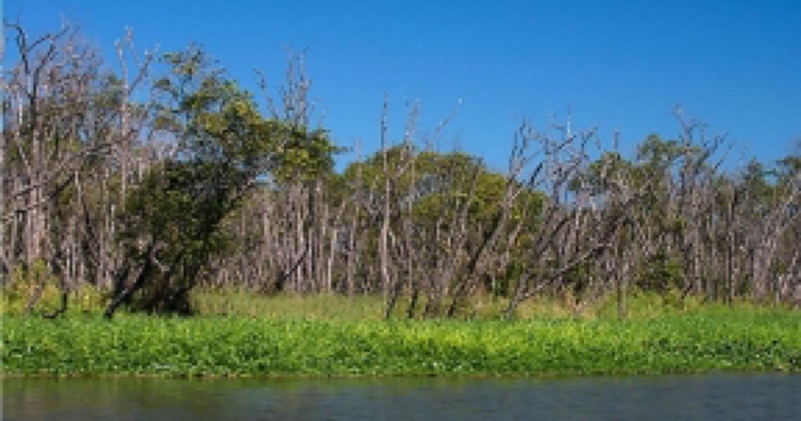Barragem do Canal do Valo Grande, Iguape e região, há séculos prejudicando o vale do Ribeira
