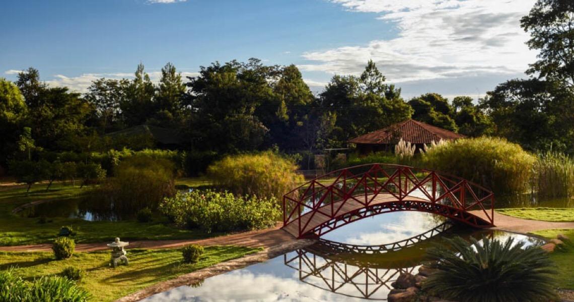 Jardim Botânico de Brasília libera acessos e autoriza ensaios fotográficos