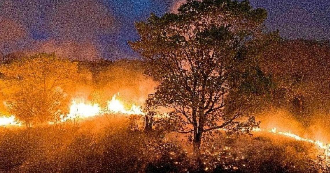 Queimadas se alastram pelo Brasil, atingindo Pantanal, Amazônia e cerrado