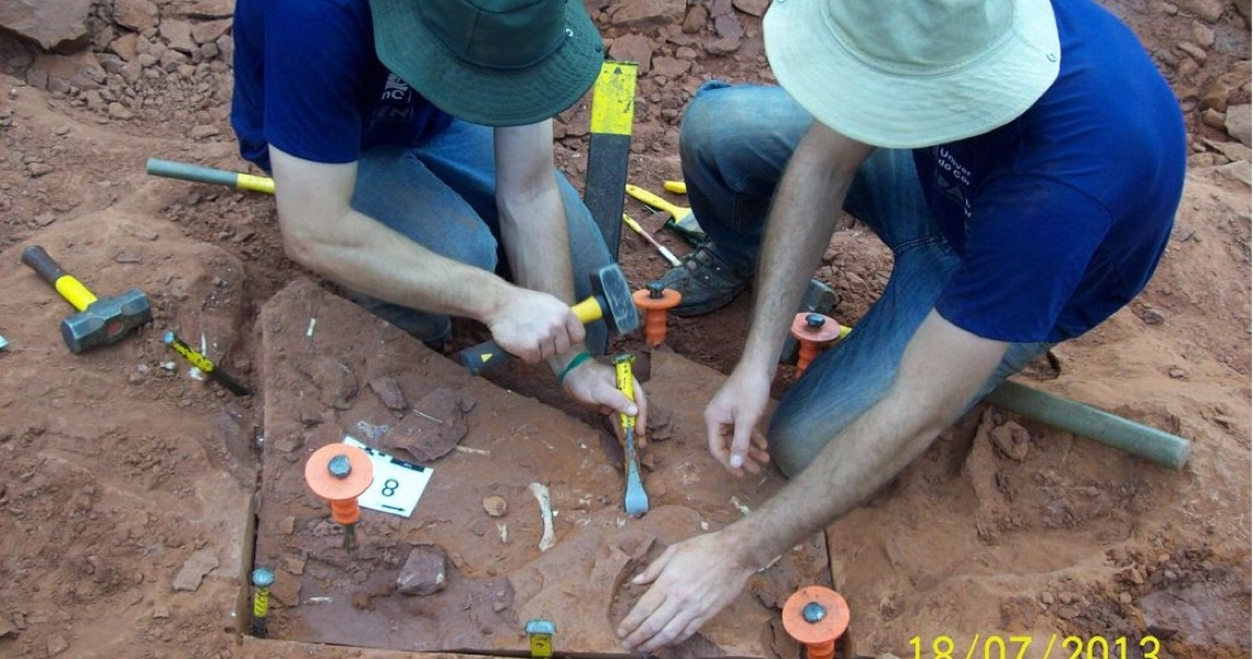 Pesquisadores apresentam dados inéditos sobre dinossauro brasileiro