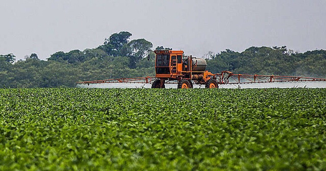 Anvisa mantém proibição do paraquate apesar de lobby pelo agrotóxico