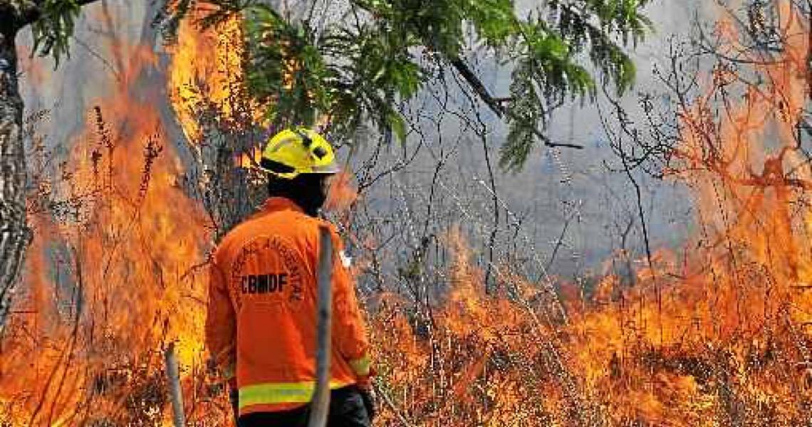 Em três meses, queimadas destruíram cerca de 16,2 mil hectares no DF