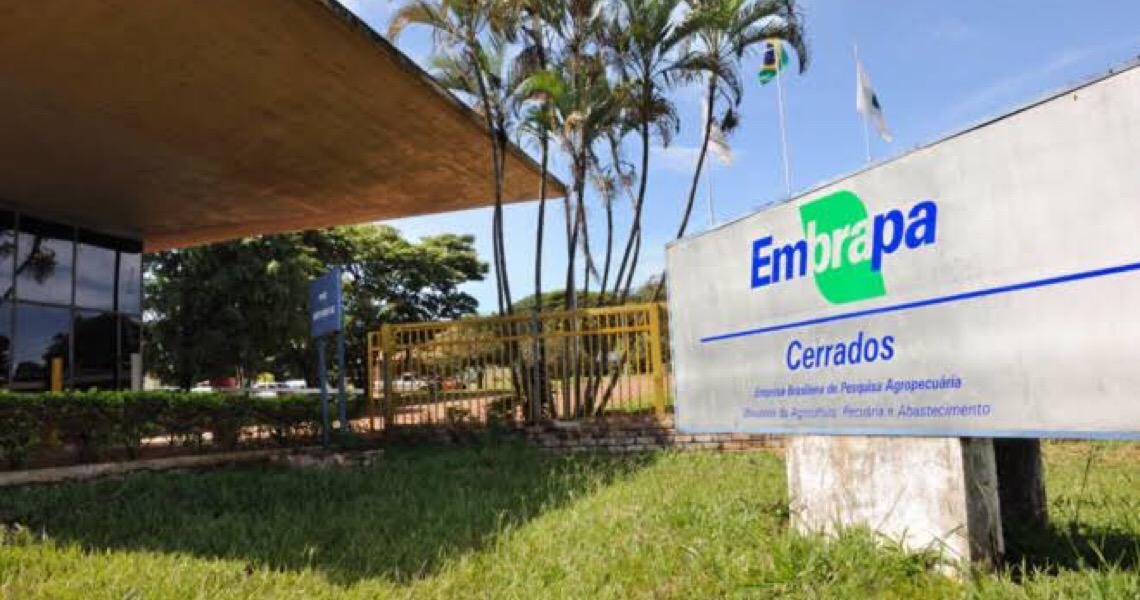 MP do DF e Embrapa celebram acordo de cooperação para cumprimento de medidas alternativas
