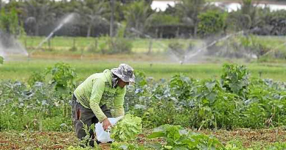 Beneficiários de assentamentos terão acesso a ate R$ 34 mil para moradia