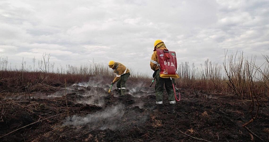 Incêndios comprometem zonas úmidas na Argentina e país enfrenta crise hídrica