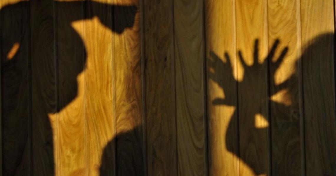 O caminho para o fim da violência de gênero no DF