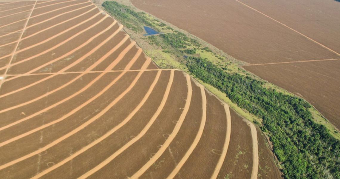 ONU afirma que proteção do planeta vai requerer novas regras comerciais