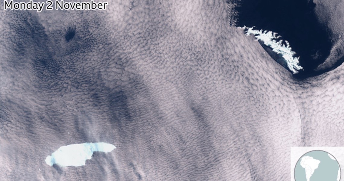 Iceberg gigante ameaça fauna da ilha Geórgia do Sul