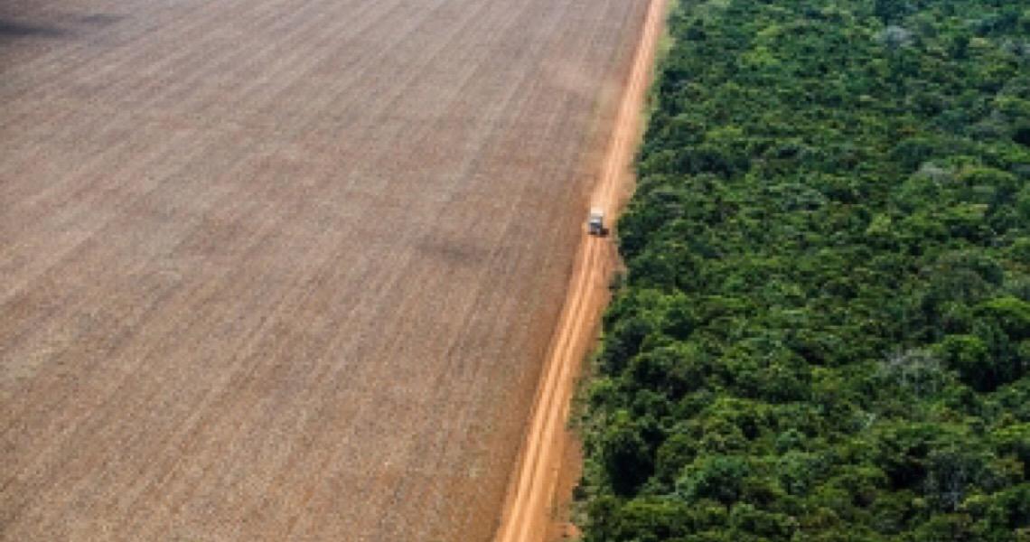 Brasil vai receber R$ 163 milhões da Alemanha para sustentabilidade na Amazônia