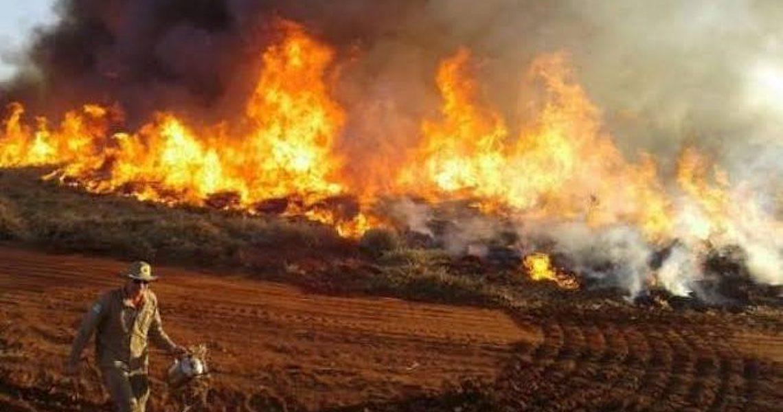 Comissão atribui as queimadas do Pantanal à ação humana e à má conduta governamental