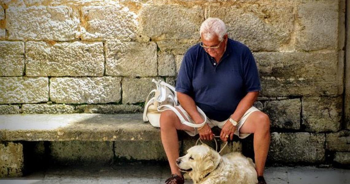 Comprovado! Pets ajudam no envelhecimento saudável e na qualidade de vida