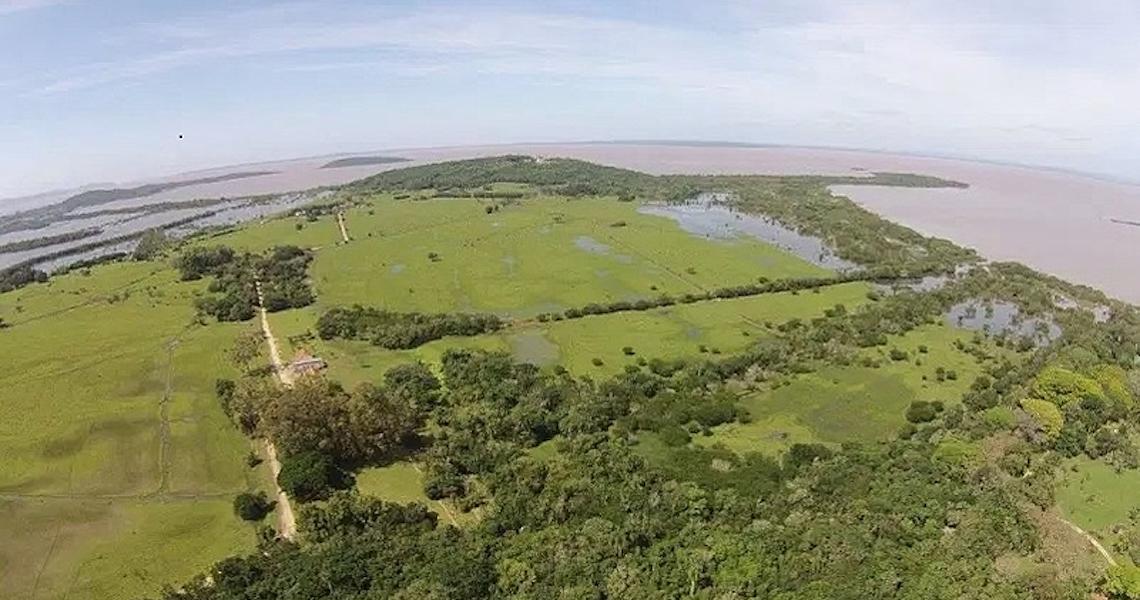 Câmara de Porto Alegre aprova medida que permite condomínio de luxo em área ambiental