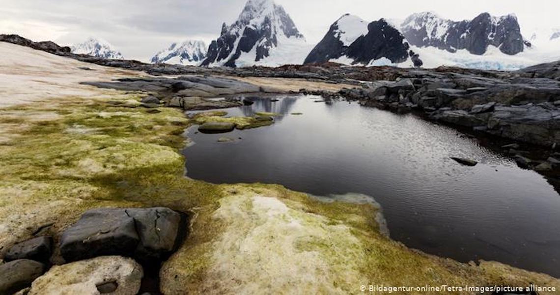 Antártida deixa de ser o único continente sem casos de covid-19