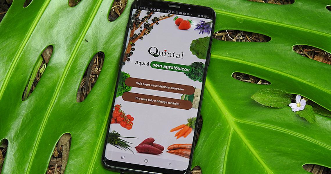 App encurta distâncias entre produtores e consumidores de alimentos orgânicos