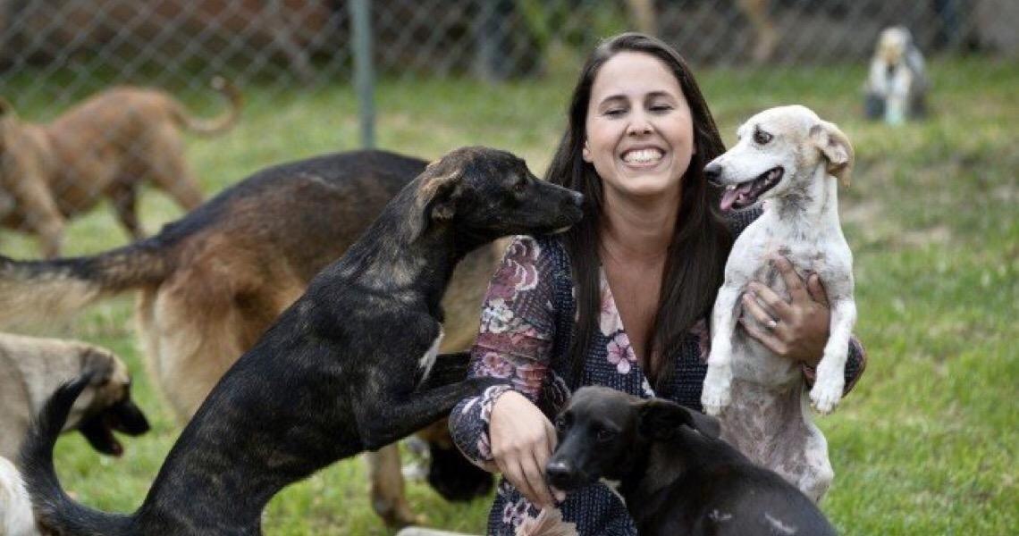 Pets podem ficar estressados com tutores confinados; saiba como protegê-los