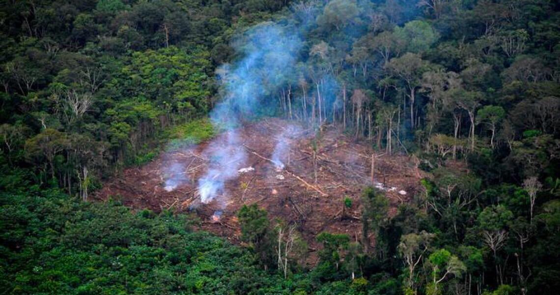 Brasil encerra 2020 com maior número de focos de queimadas em uma década
