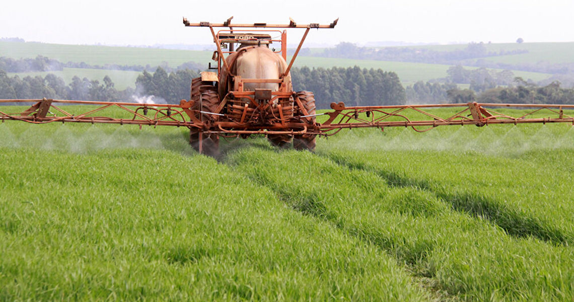 Brasil se tornou 'país do agrotóxico'? Especialistas explicam 2 lados desta 'moeda'