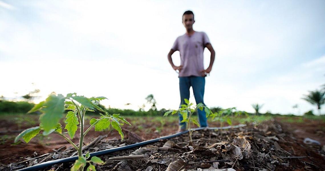 Organizações civis do DF pedem medidas voltadas à reforma agrária