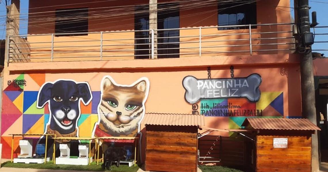 Hotel para animais: O Pancinha Feliz ajuda animais de rua a encontrarem um lar