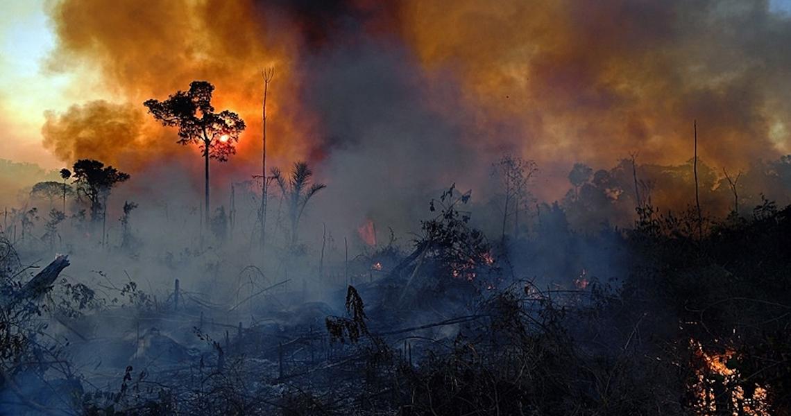 Amazônia concentra 7 dos 10 municípios que mais emitem carbono no país; veja o mapa