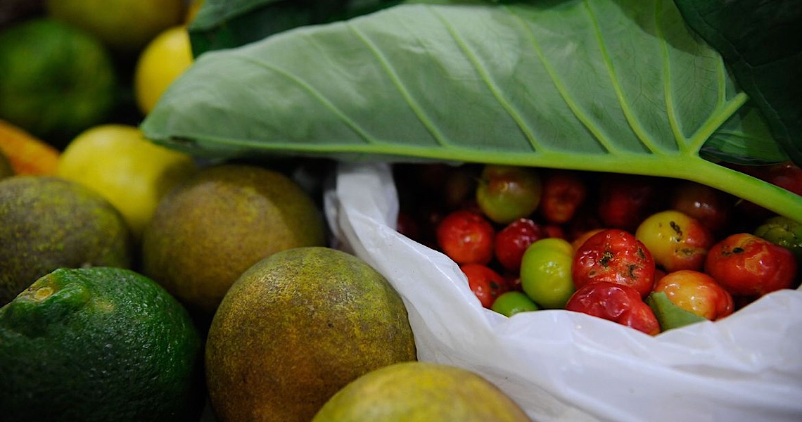 Segundo a ONU, cerca de 931 milhões de toneladas de alimentos foram para o lixo em 2019