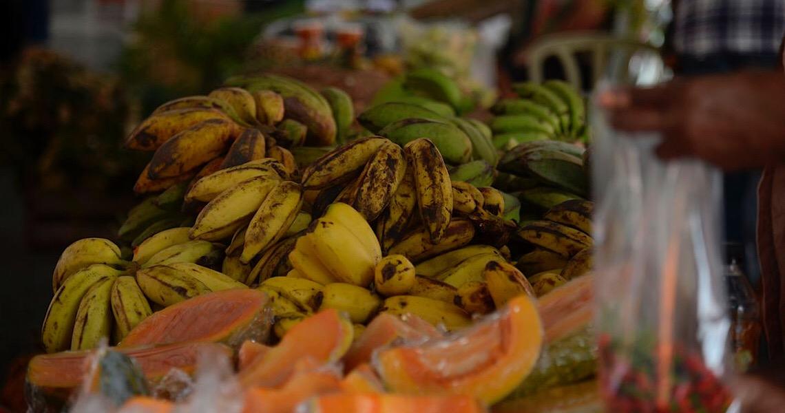 Ministério da Saúde brasileiro lança guia alimentar de bolso para menores de 2 anos