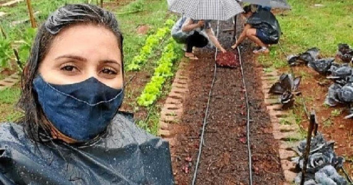 Moradores do DF contam a experiência de plantar o próprio alimento