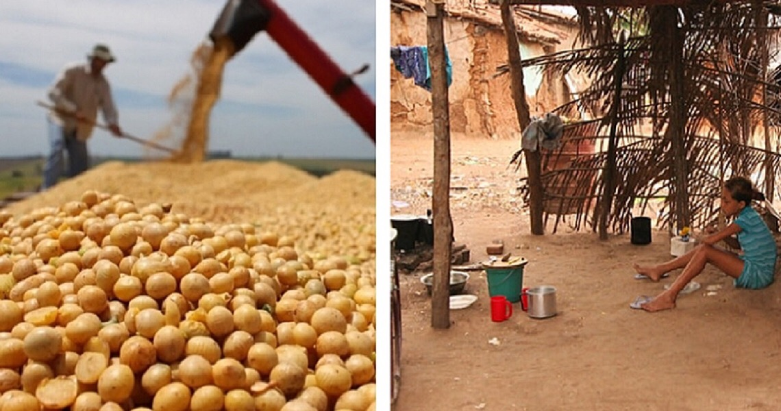 Por que milhões de brasileiros passam fome se o país colhe safras recorde?