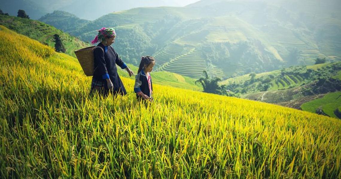"""Dossiê aborda """"trabalho invisível"""" de mulheres e meninas ao redor do mundo"""