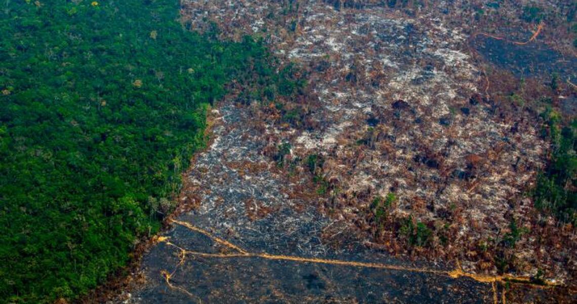 A favor da Amazônia, bancos e entidades católicas pressionam Bolsonaro