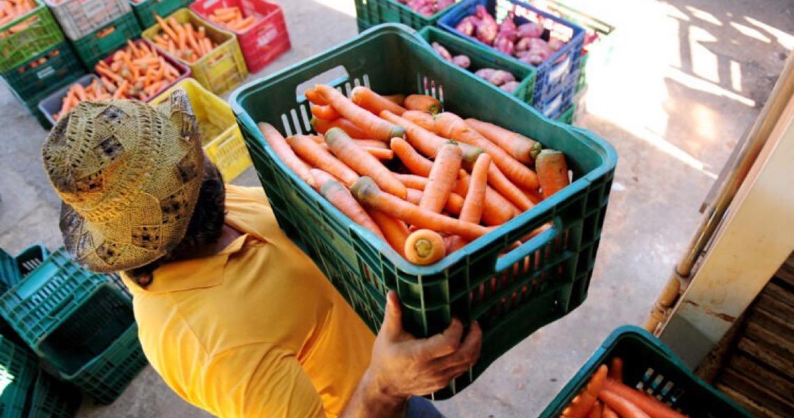 Governo do DF aplica R$ 2 mi para compras da agricultura familiar