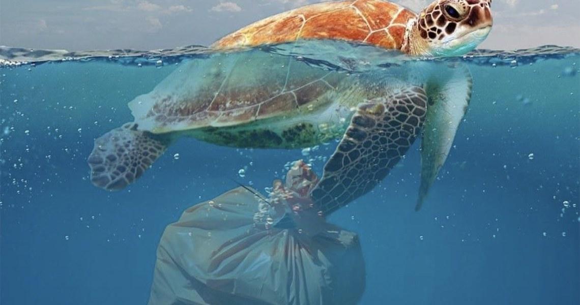 A responsabilidade com o plástico e os clientes de delivery
