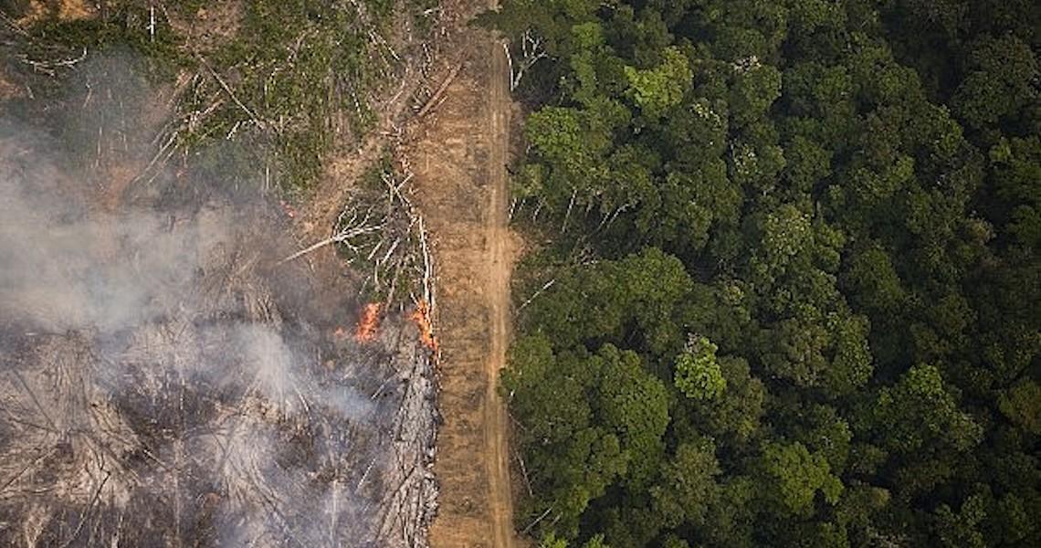Casa Branca cobra 'comprometimento claro' do Brasil contra desmatamento na Amazônia