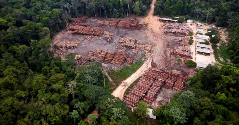 Plano do governo federal para Amazônia mantém desmatamento em alta